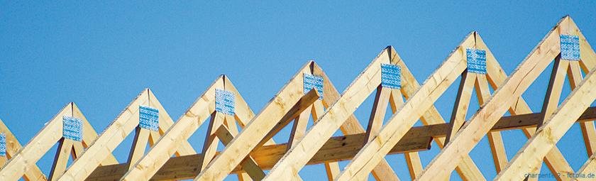 Bauausführung mit dem Bauexperten